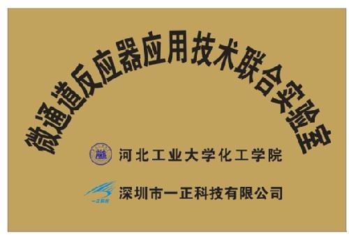 Hebei University of Technology Microreactor Joint Laboratory